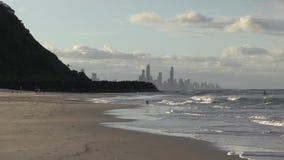 Τρεξίματα σκυλιών για τη σφαίρα, ξημερώματα, στο Palm Beach, αυστραλιανό Gold Coast απόθεμα βίντεο