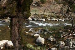 Τρεχούμενο νερό στον ποταμό βουνών Στοκ εικόνες με δικαίωμα ελεύθερης χρήσης