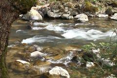 Τρεχούμενο νερό στον ποταμό βουνών Στοκ Φωτογραφία