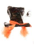 Τρελλές καπέλο και περούκα κομμάτων τσαγιού καπελάδων Στοκ φωτογραφία με δικαίωμα ελεύθερης χρήσης