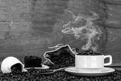 Τρελλός ερωτευμένος με τον καφέ Στοκ φωτογραφία με δικαίωμα ελεύθερης χρήσης