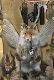Τρελλό άγριο γεμισμένο Critter Μόναχο στοκ φωτογραφία