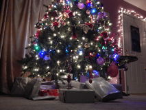 τρελλό δέντρο Χριστουγέν&nu Στοκ φωτογραφίες με δικαίωμα ελεύθερης χρήσης