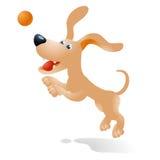 Τρελλό σκυλί Ελεύθερη απεικόνιση δικαιώματος