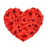 τριαντάφυλλα αγάπης καρδ Στοκ εικόνες με δικαίωμα ελεύθερης χρήσης