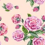 Τριαντάφυλλα ανθοδεσμών Watercolor σε ένα ρόδινο υπόβαθρο Άνευ ραφής σχέδιο για το gesign Στοκ φωτογραφίες με δικαίωμα ελεύθερης χρήσης