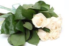 τριαντάφυλλα κρέμας ανθοδεσμών Στοκ Εικόνα