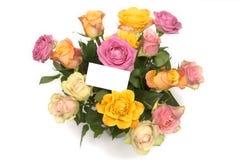 Τριαντάφυλλα κρητιδογραφιών Στοκ Εικόνες