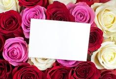 Τριαντάφυλλα με την κενή κάρτα στοκ εικόνες με δικαίωμα ελεύθερης χρήσης