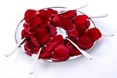 τριαντάφυλλα πιάτων Στοκ Εικόνες
