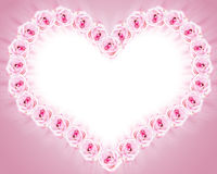 τριαντάφυλλα πλαισίων Στοκ φωτογραφίες με δικαίωμα ελεύθερης χρήσης