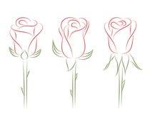 τριαντάφυλλα που τίθεντ&alp διανυσματική απεικόνιση
