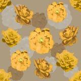 τριαντάφυλλα προτύπων άνε&upsi Στοκ Φωτογραφία