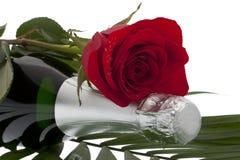 τριαντάφυλλα σαμπάνιας μπουκαλιών Στοκ φωτογραφία με δικαίωμα ελεύθερης χρήσης