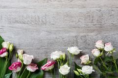 Τριαντάφυλλα στην ξύλινη ανασκόπηση Στοκ Εικόνες