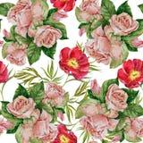 Τριαντάφυλλα Watercolor με κόκκινο peony σε ένα άσπρο υπόβαθρο Άνευ ραφής σχέδιο για το gesign Στοκ Εικόνες
