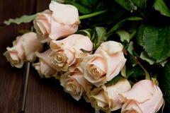 Τριαντάφυλλα δεσμιδών Ð ¡ Στοκ εικόνες με δικαίωμα ελεύθερης χρήσης