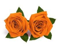 Τριαντάφυλλα ζευγών δώρων την ημέρα βαλεντίνων που απομονώνεται backgroun Στοκ Εικόνες