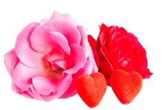 Τριαντάφυλλα και δύο καρδιές σε ένα άσπρο υπόβαθρο Στοκ εικόνες με δικαίωμα ελεύθερης χρήσης