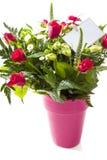 Τριαντάφυλλα με την αγάπη Στοκ φωτογραφία με δικαίωμα ελεύθερης χρήσης