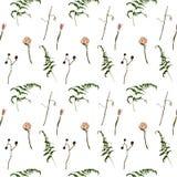 Τριαντάφυλλα, ξηροί κλάδοι και άνευ ραφής σχέδιο φτερών Στοκ Εικόνες