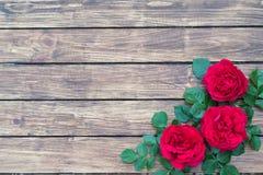 Τριαντάφυλλα σε ένα ξύλινο υπόβαθρο Στοκ φωτογραφίες με δικαίωμα ελεύθερης χρήσης