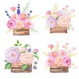 Τριαντάφυλλα στο ξύλινο κιβώτιο διανυσματική απεικόνιση