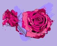 τριαντάφυλλα δύο Στοκ εικόνα με δικαίωμα ελεύθερης χρήσης