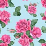 Τριαντάφυλλα 6 floral πρότυπο άνευ ραφής Στοκ Φωτογραφίες