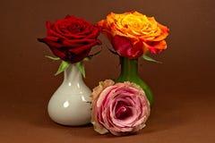 Τριαντάφυλλα Thre Στοκ Εικόνα