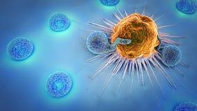 τρισδιάστατη απεικόνιση των καρκινικών κυττάρων και των λεμφοκυττάρων στοκ φωτογραφία με δικαίωμα ελεύθερης χρήσης