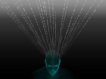 τρισδιάστατη απόδοση του ανθρώπινου κεφαλιού με το δυαδικό κώδικα Στοκ φωτογραφίες με δικαίωμα ελεύθερης χρήσης