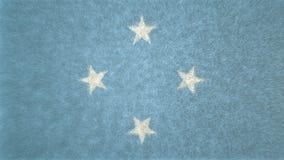τρισδιάστατη εικόνα των συνενωμένων σε ομοσπονδία κρατών της σημαίας της Μικρονησίας Διανυσματική απεικόνιση