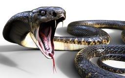 τρισδιάστατος βασιλιάς Cobra το παγκόσμιο ` s μακρύτερο δηλητηριώδες φίδι Στοκ Εικόνες