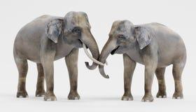 τρισδιάστατος δώστε των ασιατικών ελεφάντων διανυσματική απεικόνιση