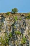 τρισδιάστατο όμορφο καλοκαίρι τοπίου απεικόνισης Στοκ Εικόνες