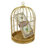 τρισδιάστατα αμερικανικά δολάρια στο χρυσό birdcage Στοκ Εικόνες