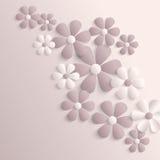 τρισδιάστατα λουλούδια sakura εγγράφου Στοκ Εικόνες