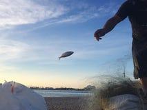τρισδιάστατες πετώντας συμβολοσειρές ψαριών ανασκόπησης μπλε στοκ φωτογραφία με δικαίωμα ελεύθερης χρήσης