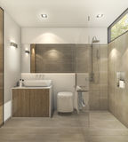 τρισδιάστατη δίνοντας θερμή τουαλέτα τόνου με το όμορφα κεραμίδι και το ντεκόρ Στοκ Εικόνα