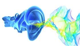 τρισδιάστατη ανατομία αυτιών με τα υγιή κύματα διανυσματική απεικόνιση