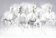 τρισδιάστατη απεικόνιση των αλόγων Στοκ Εικόνα