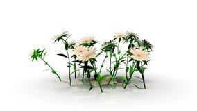 τρισδιάστατη απόδοση μιας αύξησης λουλουδιών διανυσματική απεικόνιση