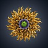 τρισδιάστατη αφηρημένη οργανική μορφή αστεριών κάκτων λουλουδιών Στοκ Εικόνες