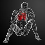 τρισδιάστατη ιατρική απεικόνιση Στοκ Φωτογραφίες