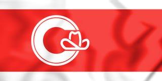 τρισδιάστατη σημαία του Κάλγκαρι & x28 Alberta& x29 , Καναδάς Στοκ Εικόνες