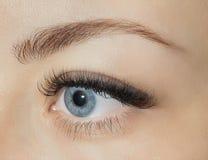 Τρισδιάστατη τεχνική Eyelash μπροστά από ένα νέο κορίτσι, καθώς επίσης και modeli Στοκ Εικόνες