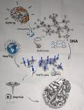 τρισδιάστατος εγκέφαλος μετάλλων με το ιατρικό εικονίδιο Στοκ εικόνα με δικαίωμα ελεύθερης χρήσης