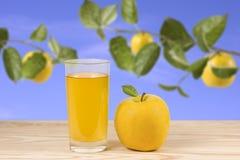 τρισδιάστατος μήλων φυσικός διαφανής χυμού εικόνας γυαλιού τροφίμων πτώσης μήλων εννοιολογικός Στοκ Φωτογραφία