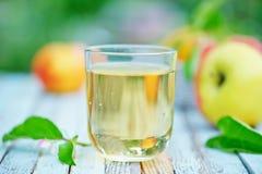 τρισδιάστατος μήλων φυσικός διαφανής χυμού εικόνας γυαλιού τροφίμων πτώσης μήλων εννοιολογικός Στοκ Εικόνες